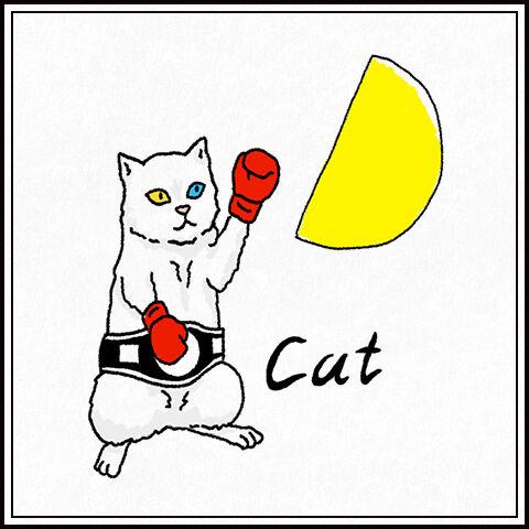猫(オッドアイ)