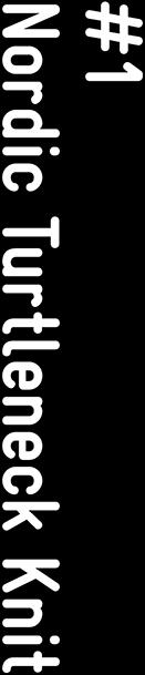 #1 Nordic Turtleneck Knit