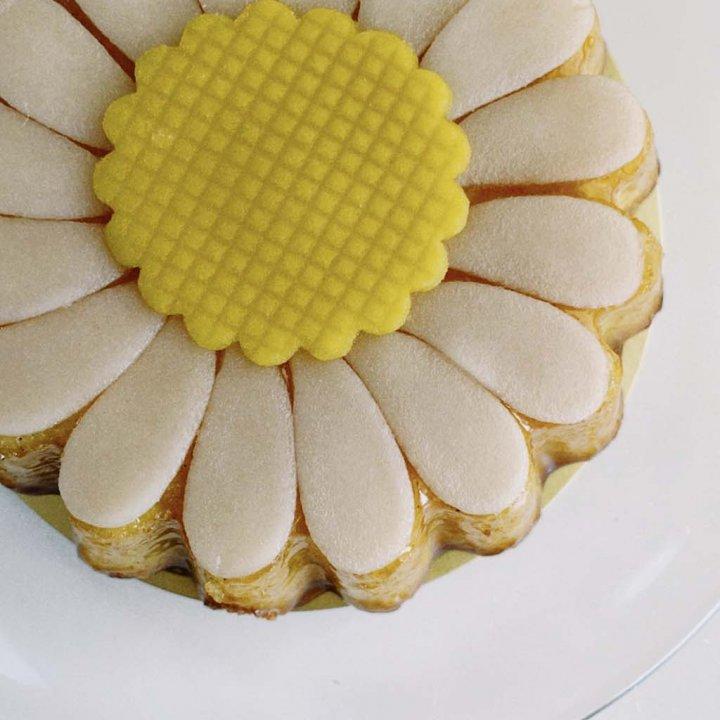 おうち時間とお散歩時間で楽しむ、春にぴったりお花のケーキ【ささやかですてきなもの 大谷有紀 vol.51】